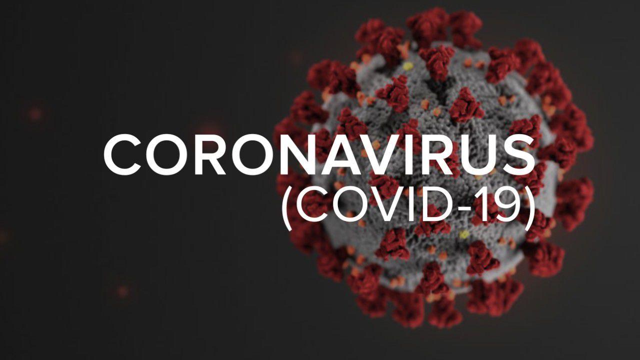 Bulletin de surveillance du SPR de juin 2020 sur l'épidémie de coronavirus et la coronapanique (Vidéos)