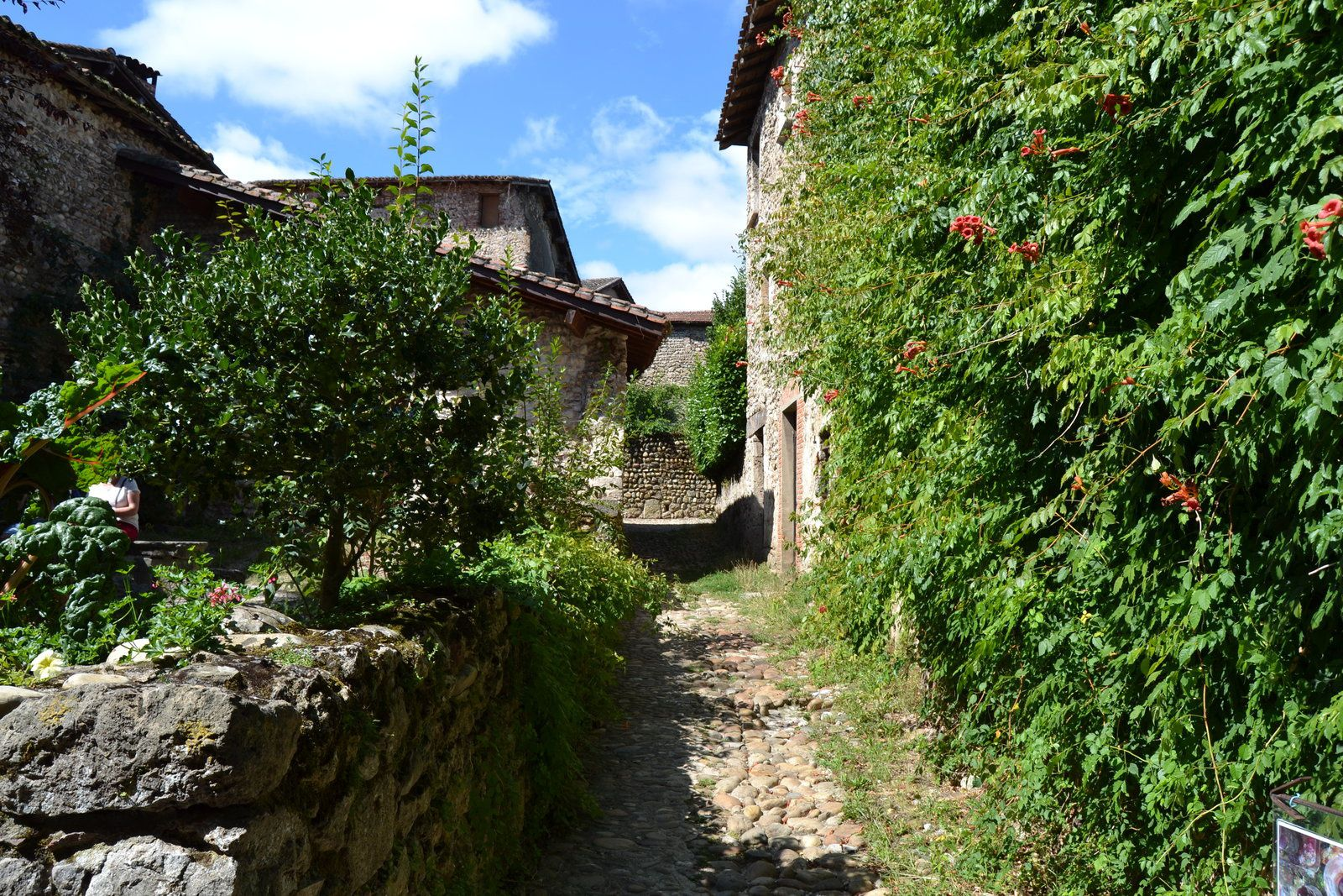 Des éléments de la citée croisés çà et là dans le village, dont, au creux de sa niche, le saint Georges, patron de Pérouges.
