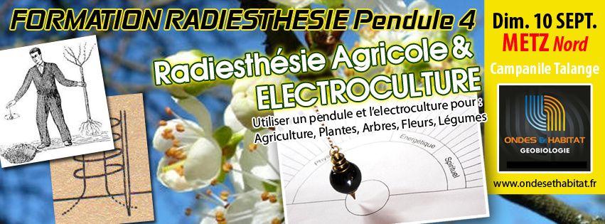 """Formation Pendule 4 : 'La radiesthésie Agricole, Botanique, et l'electroculture""""  Dimanche 10 Septembre 2017 à Talange"""