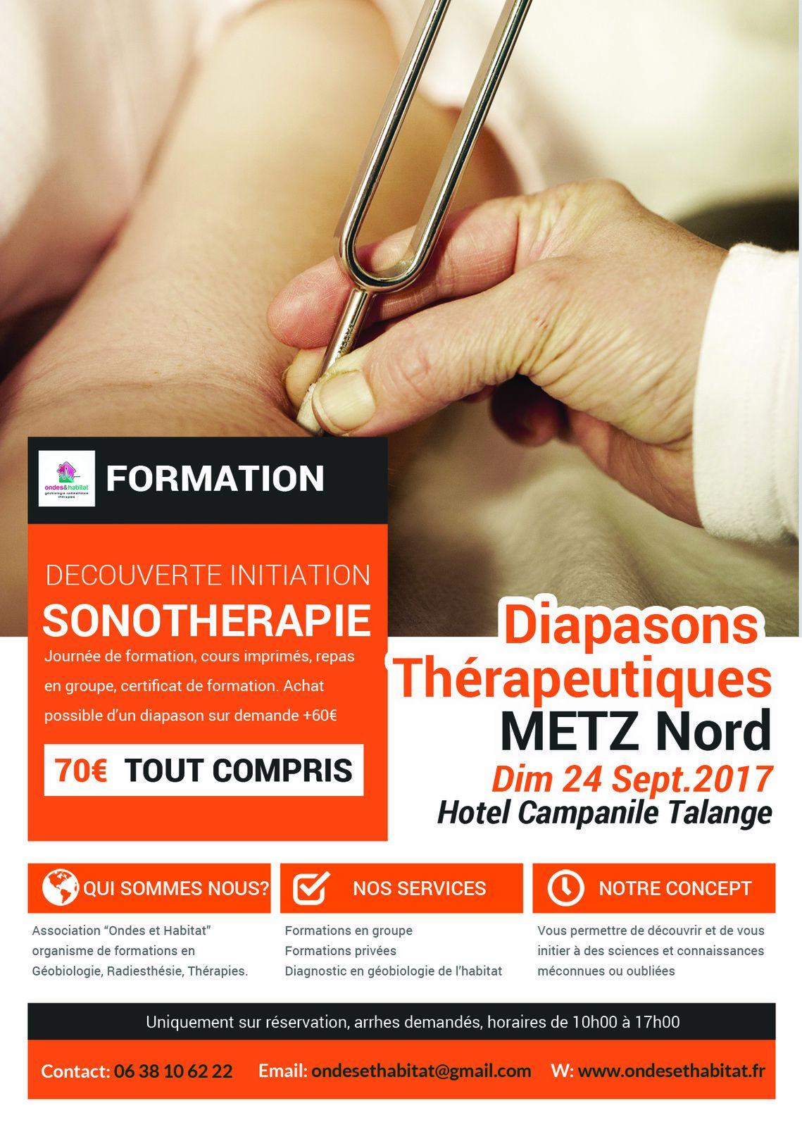 """METZ SONOTHERAPIE : """"DIAPASONS Thérapeutiques, soigner le corps et l'âme"""" Dim. 24 septembre."""