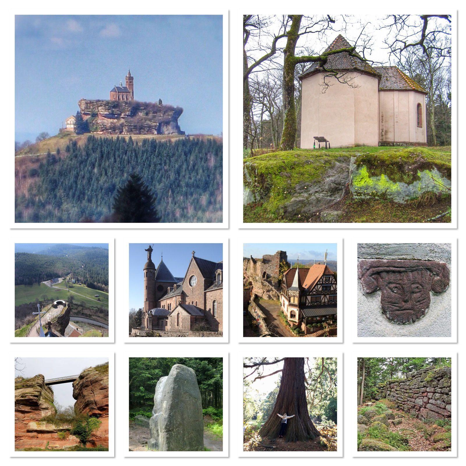 Images sortie en Alsace