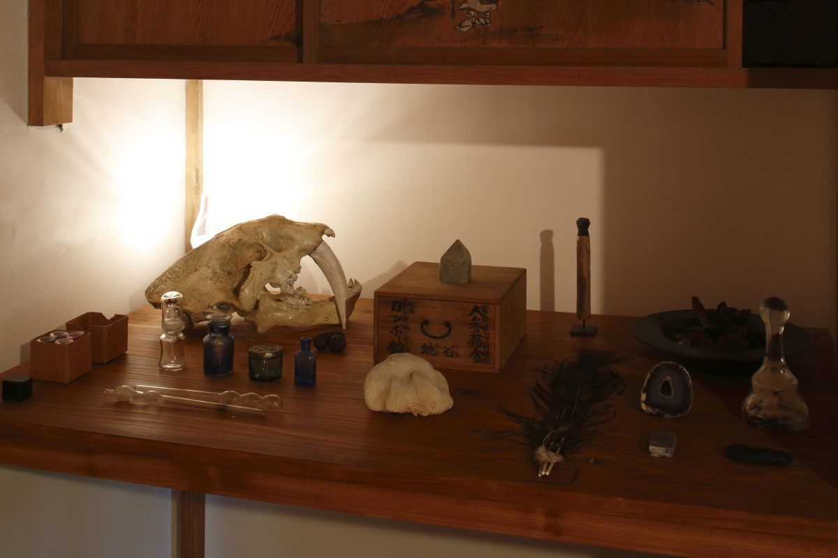 The Cabinet of Dr Komo