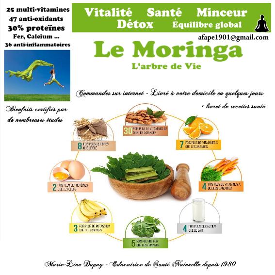 MORINGA : Arbre de Vie - Marie-Line Dupuy Naturo-Énergeticienne
