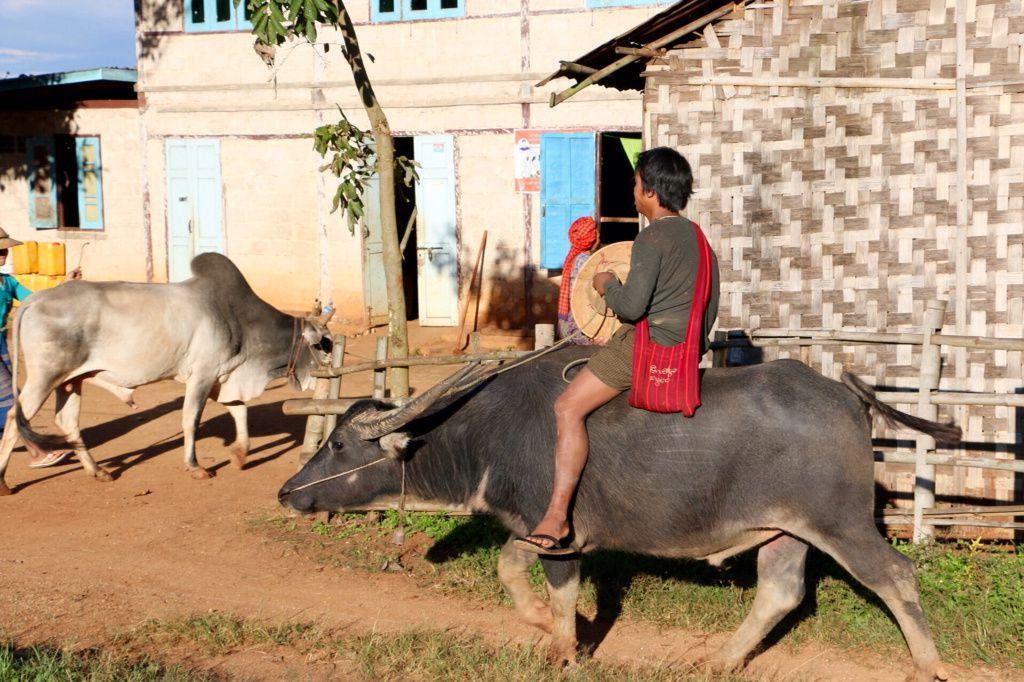 Birmanie 6ème jour suite photo
