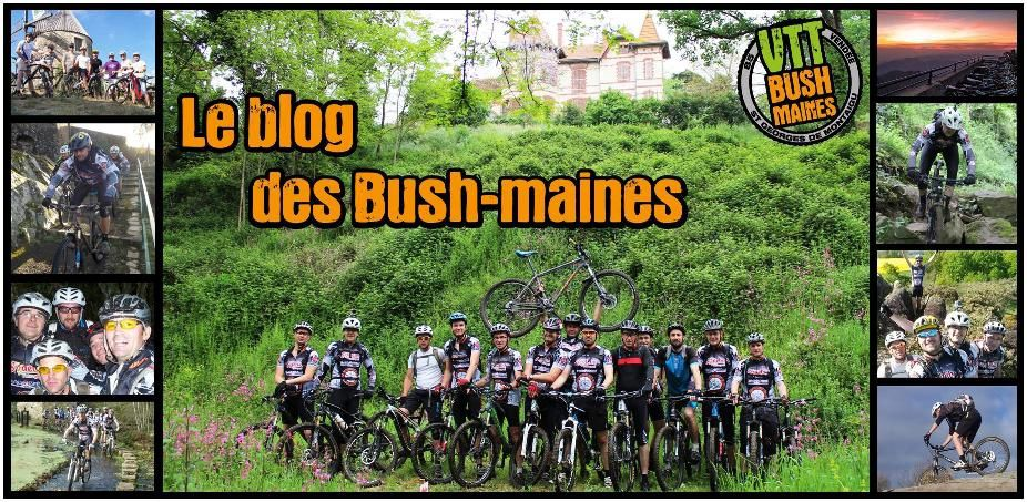 Le blog des Bush-maines