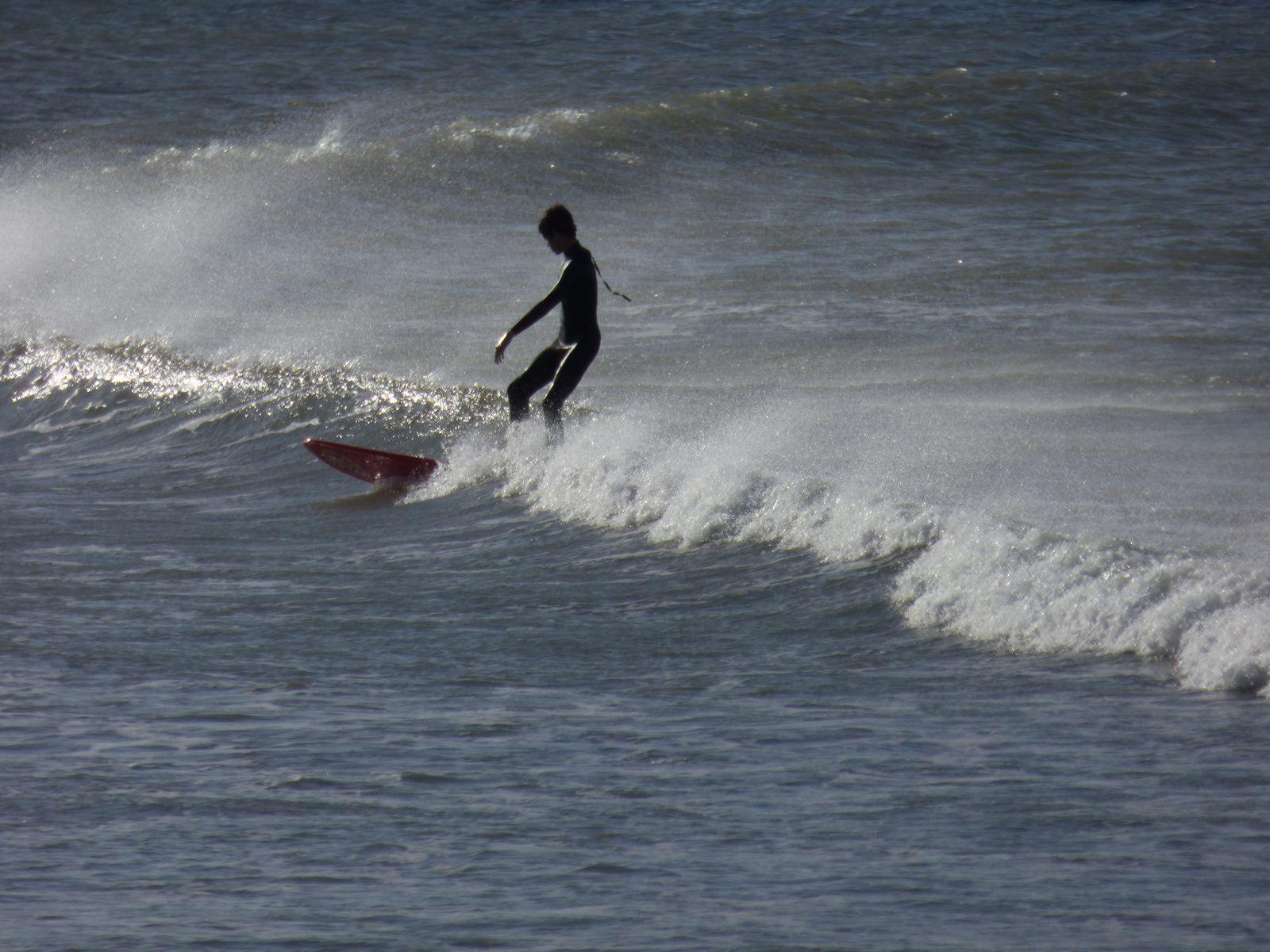 Petits surfeurs à l'eau....
