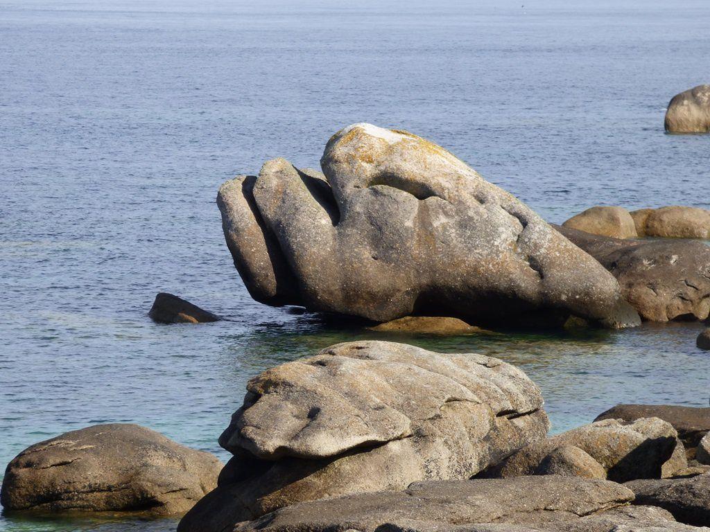 Kerlouan et les hirondelles de mer