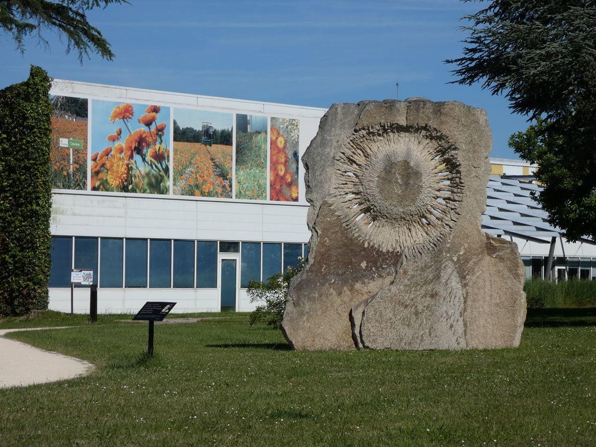 En juin, descendons au jardin botanique Yves Rocher