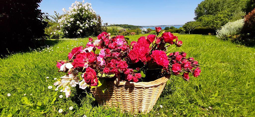 Puis, la semaine suivante, j'ai ajouté des roses rouges parfumées