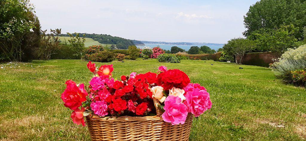 Cette semaine, ce sont des roses jaunes et des roses thé que j'ai choisies pour les bouquets.