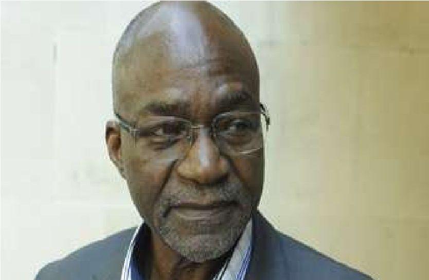 """Tchad - Saleh Kebzabo : """"L'objectif de l'opposition est de remporter un tiers bloquant à l'Assemblée en 2015"""""""