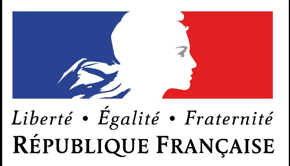 Info-France-Diplomatie: les vols en provenance et à destination du Tchad déconseillés