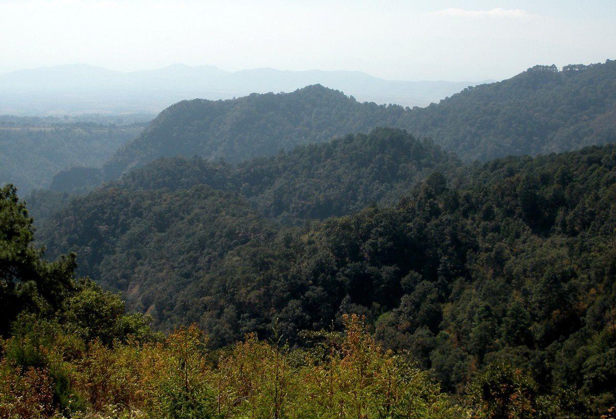 Tour d'horizon du lieu de pique-nique, des rochers arides contrastant avec la végétation des alentours. Pour agrandir les photos, cliquez dessus...