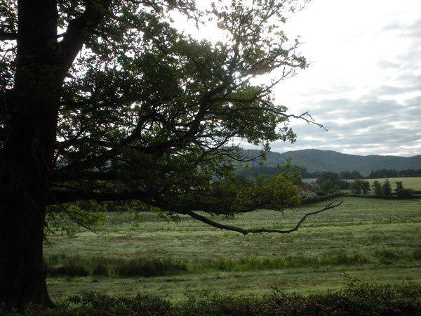 Belle vallée agricole vers La Tagnière
