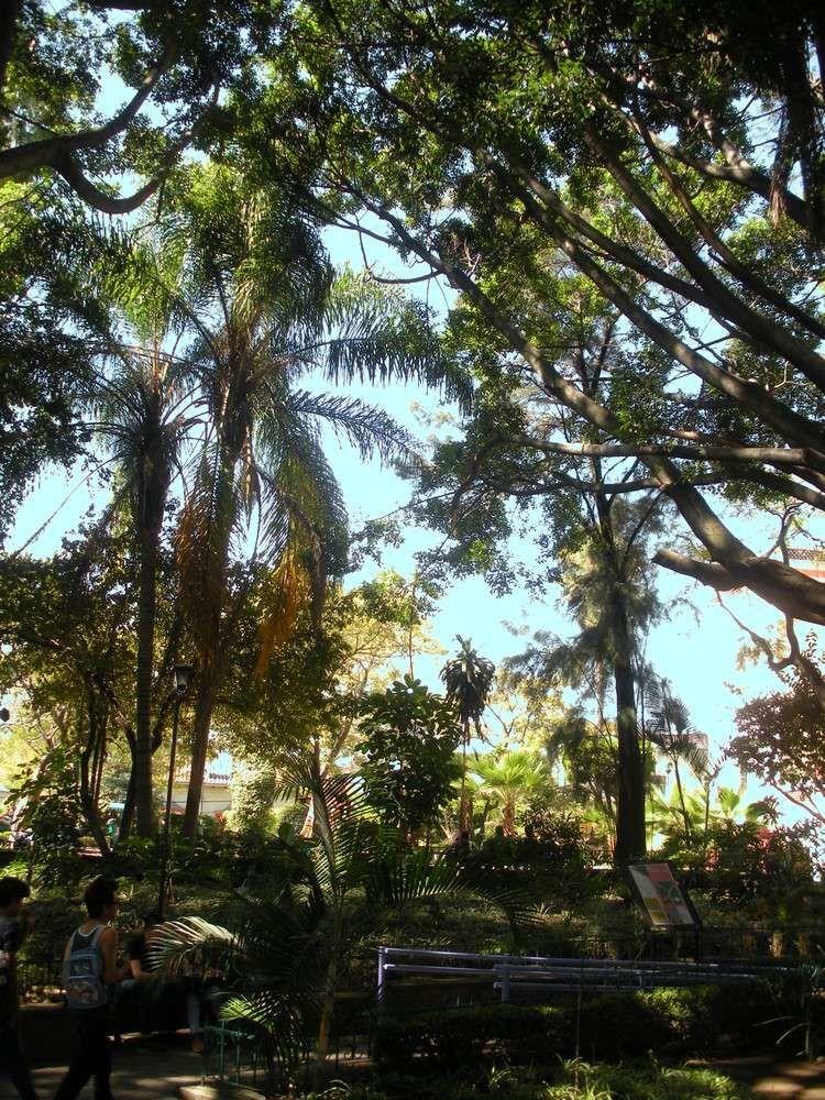 La visite de ce parc complète fort bien une visite au Jardin Borda, et à l'atrium de la Cathédrale, qui sont tout proches