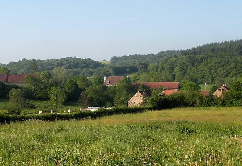 Bienvenue à Saisy en pleine Bourgogne