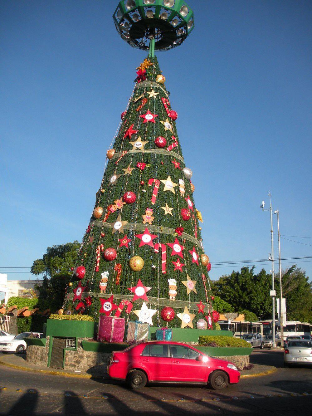 Un cône plus qu'un arbre, mais néanmoins festif, à Cuernavaca