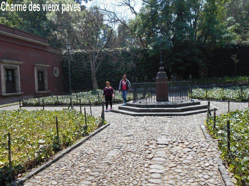 San Angel : une véritable oasis ombragée et artistique dans la mégapole de Mexico