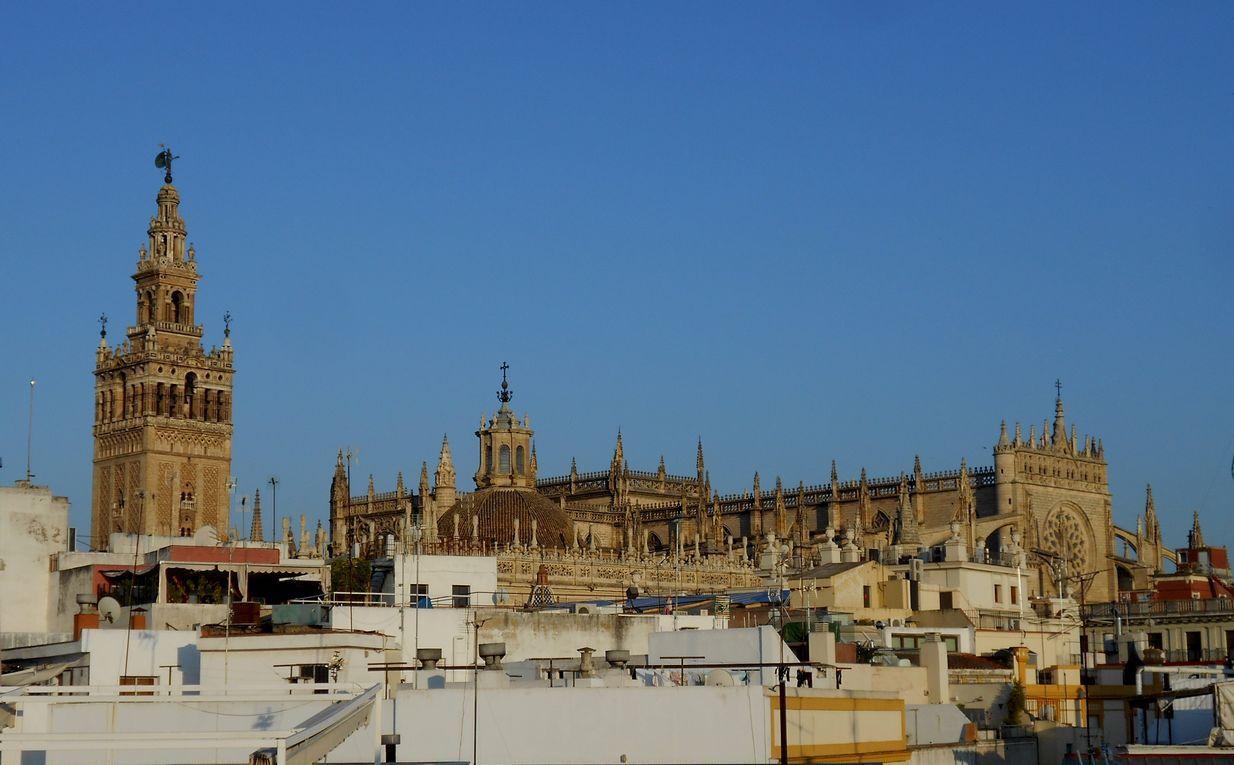 La cathédrale de Séville se fait désirer : acheter le billet à l'iglesia del Salvador !
