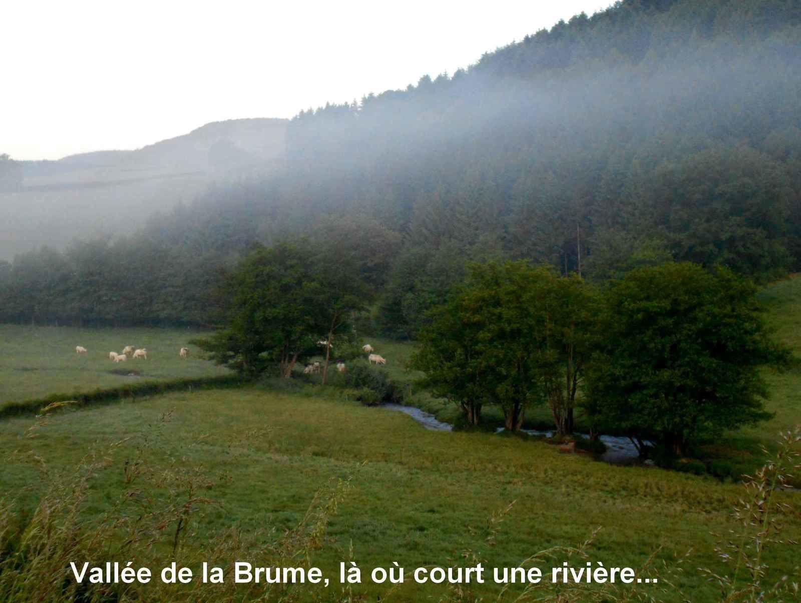 Le signal d'Uchon par la vallée de la Brume : à découvrir !