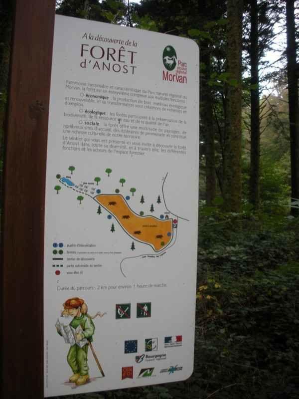 Le col d'Anost mène au parc des sangliers : du versant de la Loire à celui de la Seine