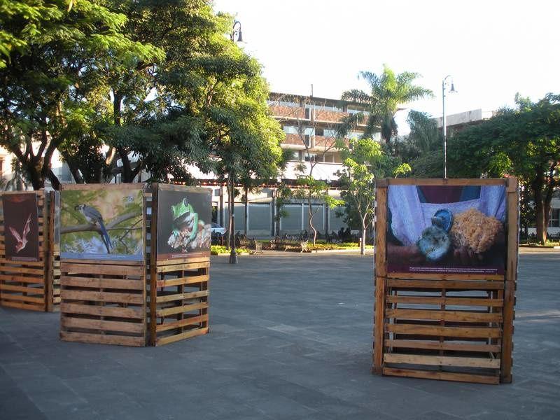 La place centrale de Cuernavaca complètement remodelée