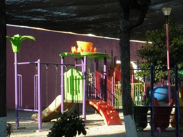Une balade pédagogique au parc d'Acapantzingo à Cuernavaca