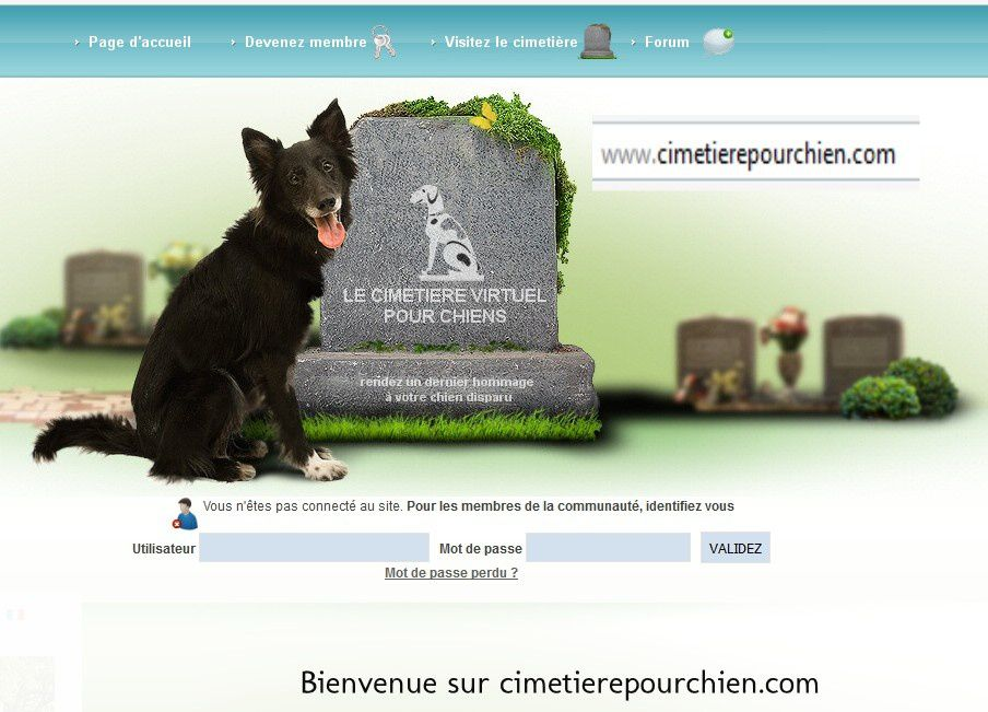 DIFFERENTS ASPECT DU CIMETIERE POUR CHIENS, COPIES D'ECRANS DU SITE