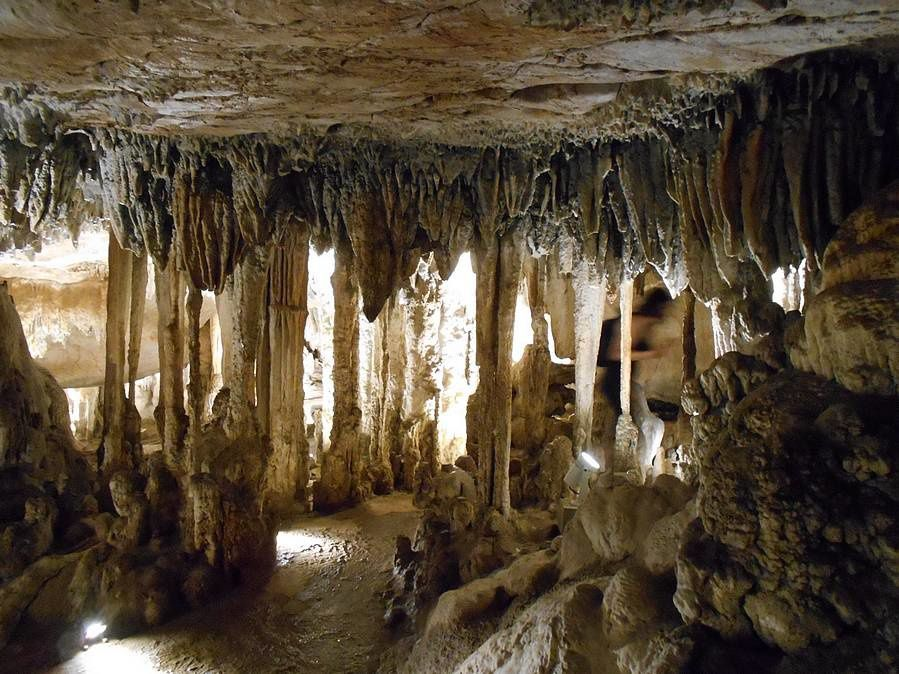 Grottes et chauves-souris de la Sierra Madre Del Sur