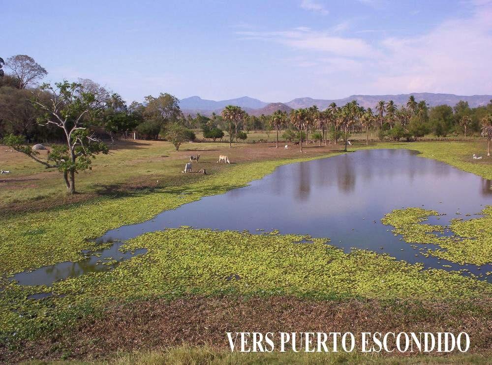 Encore quelques paysages naturels du Mexique, qui ont de quoi enchanter