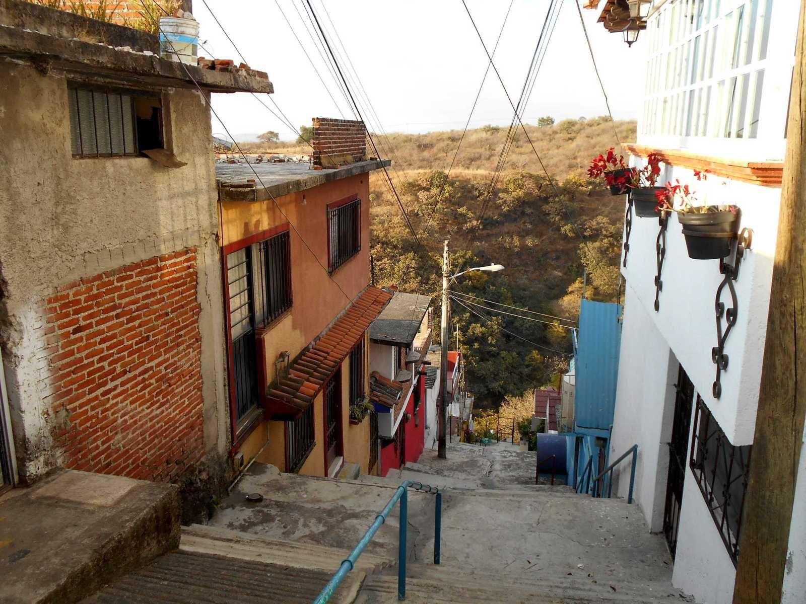Un matin comme les autres à Cuernavaca : Popo, chats et barrancas