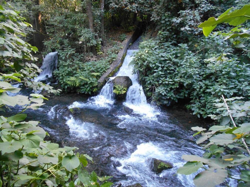 Cupatitzio : Le parc naturel du rio qui chante !