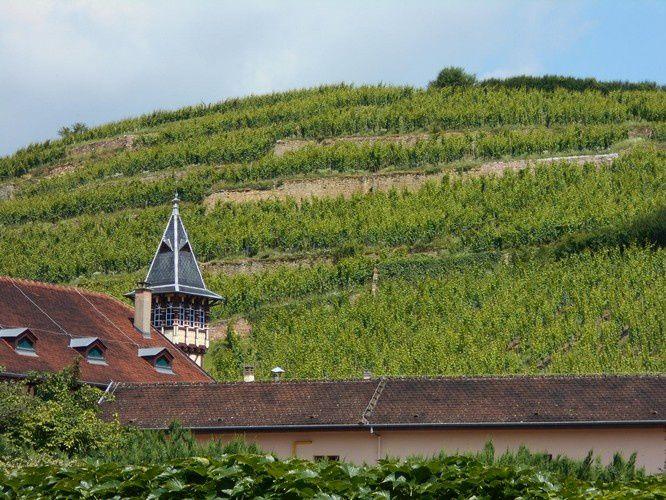 Ribeauvillé, Riquewihr, en plein  coeur de la succulente Alsace