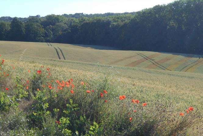 Un patrimoine superbe et enchanteur dans les vallonnements de l'Aisne