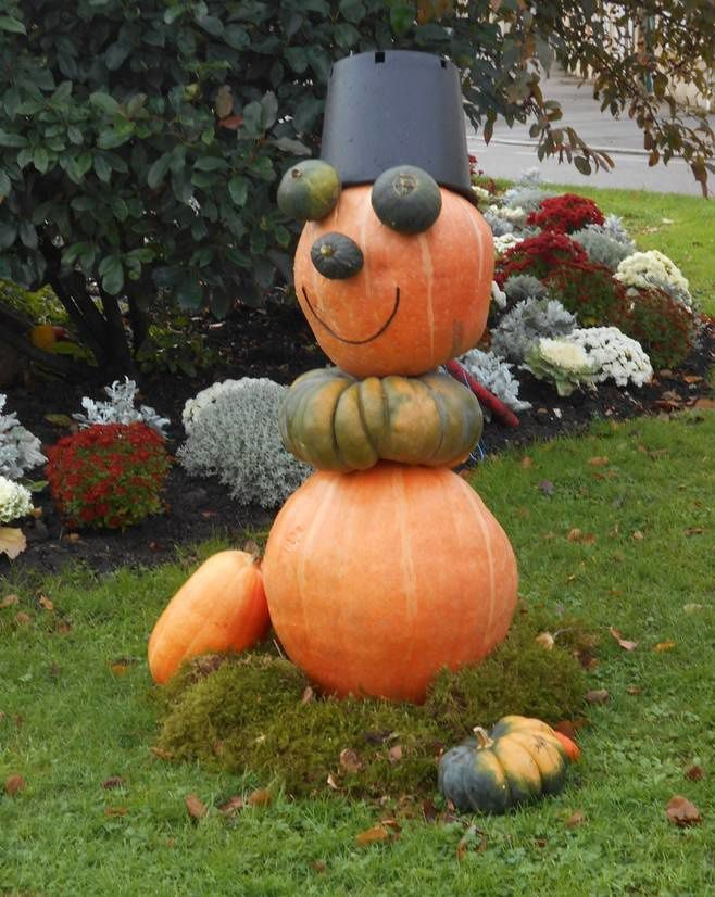 Potirons d'Halloween : il y a courge et courge...