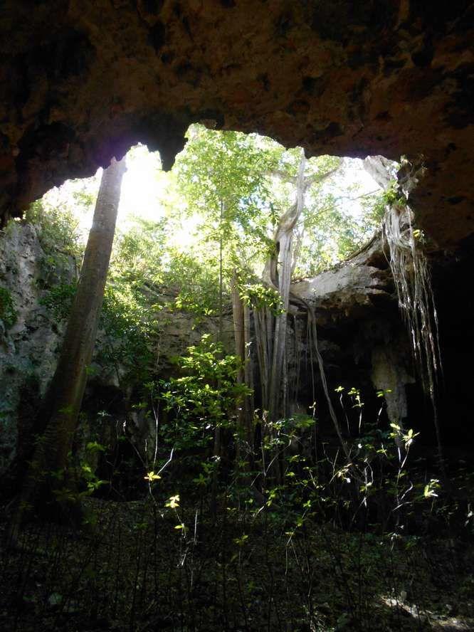 Fleurs de pierre en sous-sol à Loltún, dans les profondeurs de roches et de millénaires