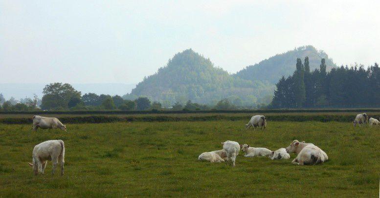 Les collines jumelles de la plaine d'Autun