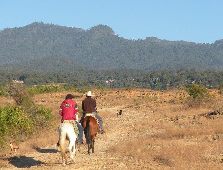 Les cavaliers s'éloignent après un sonore buenos dias