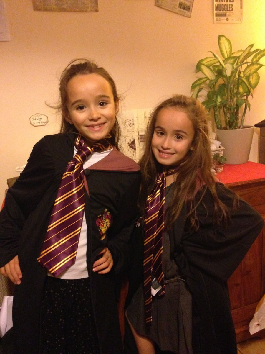 Faire Une Deco Harry Potter Tuto Maman Blablate