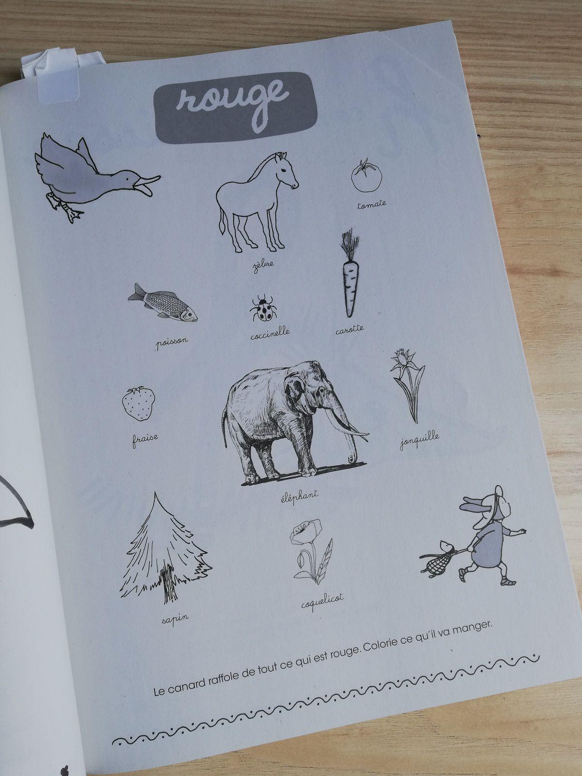 Mon gros cahier d'activités de Baltazar maternelle