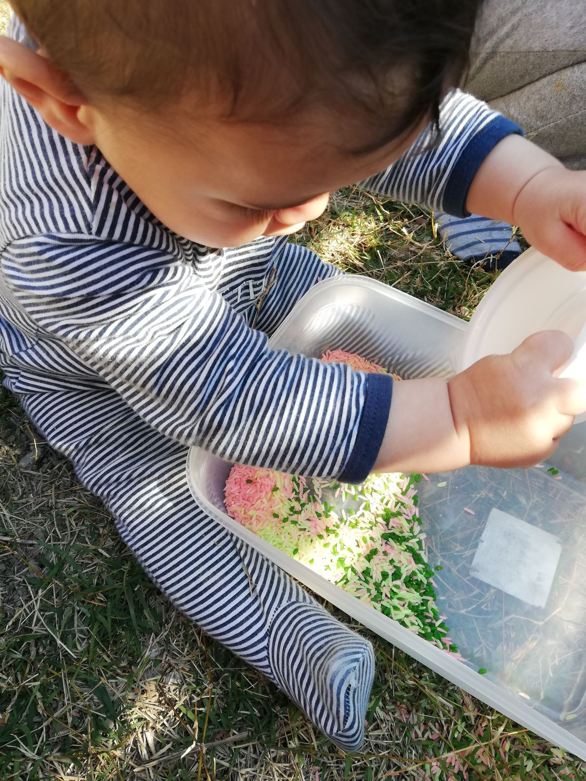 Patouillage dans du riz coloré