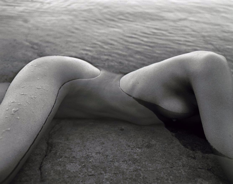 Image © Patrick Demarchelier