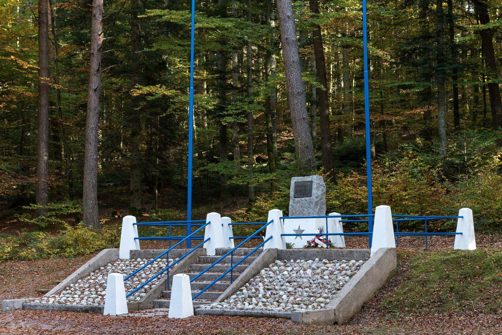 BRUYÈRES-VOSGES : une stèle à la mémoire des Libérateurs de Bruyères