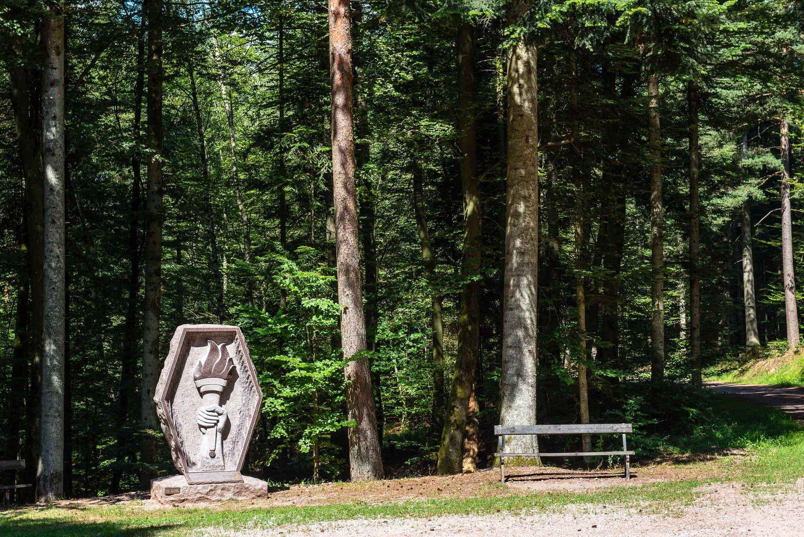 BRUYÈRES-VOSGES : retour à la Stèle inaugurée en 2017 au Monument Américain