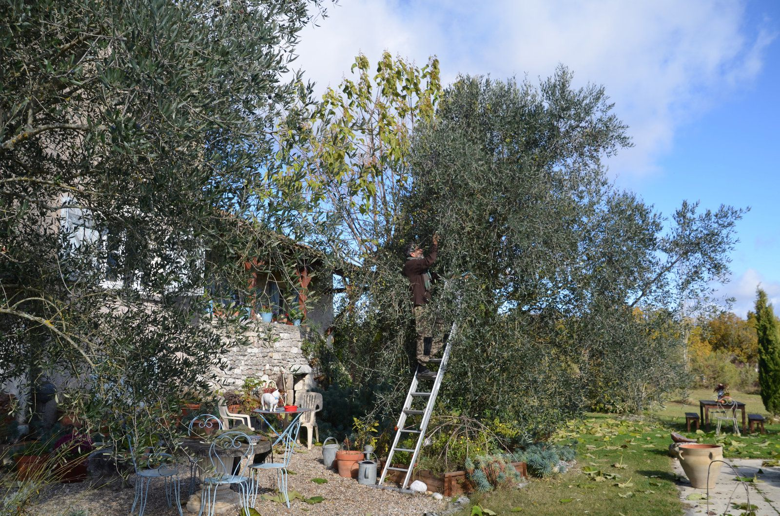 Atelier & jardin