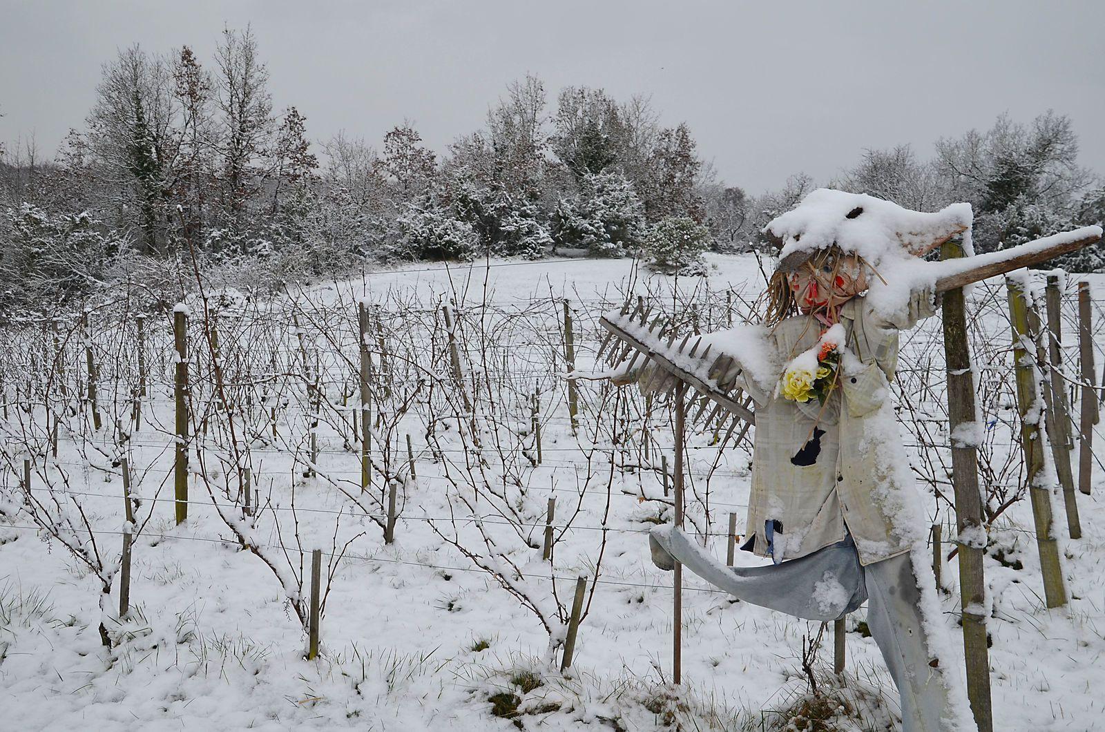 Domaine Les Cyprès - atelier - jardin - neige !