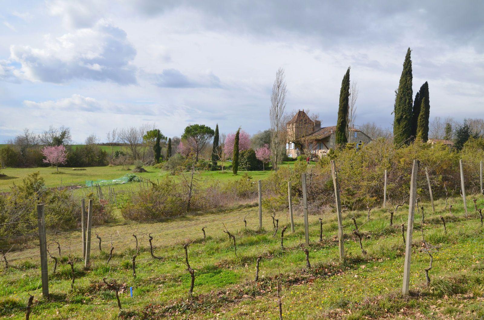 Domaine Les Cyprès - Atelier & jardin