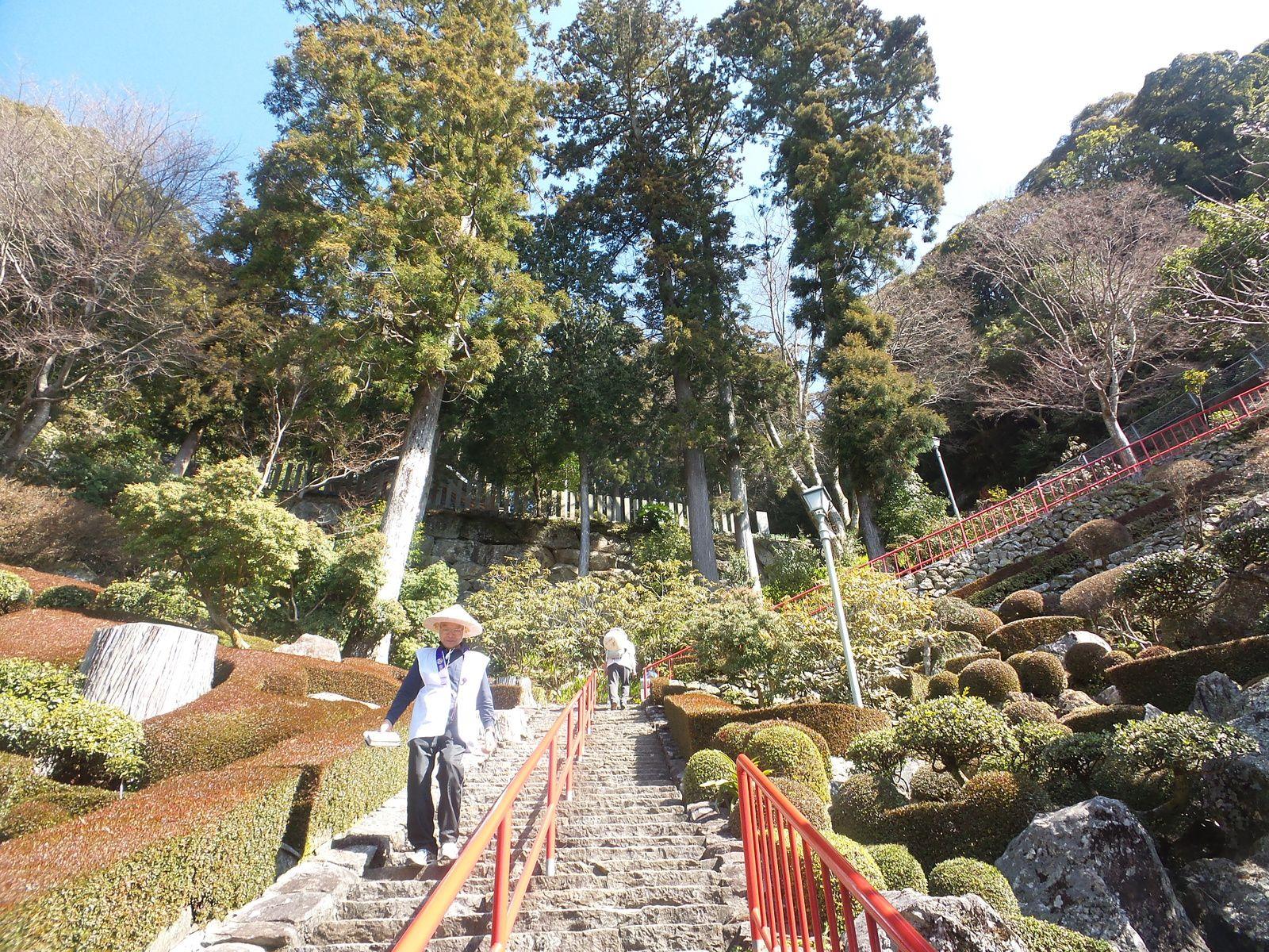 Temple 27 et Aki