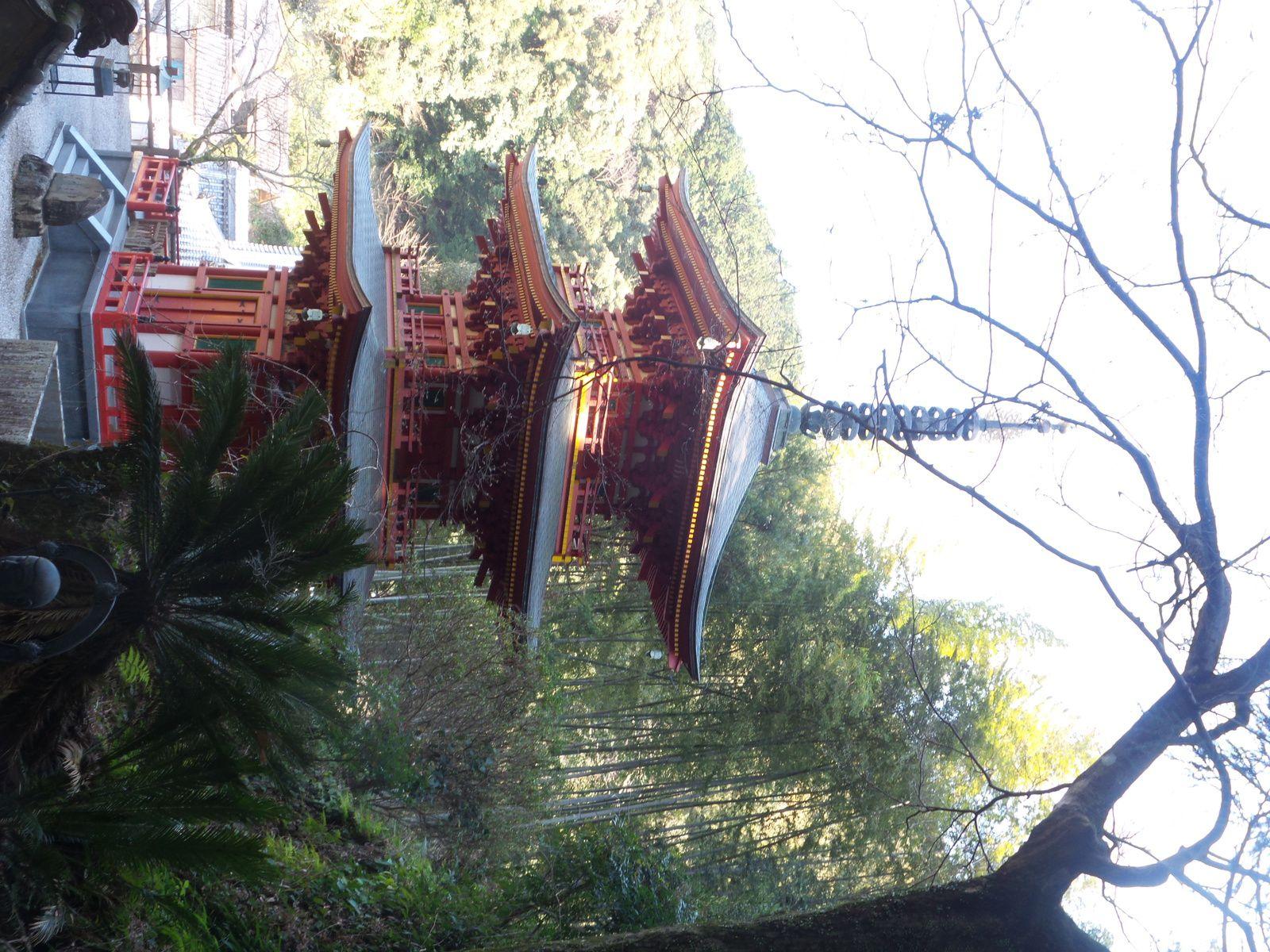 Temple 37 Jour 19