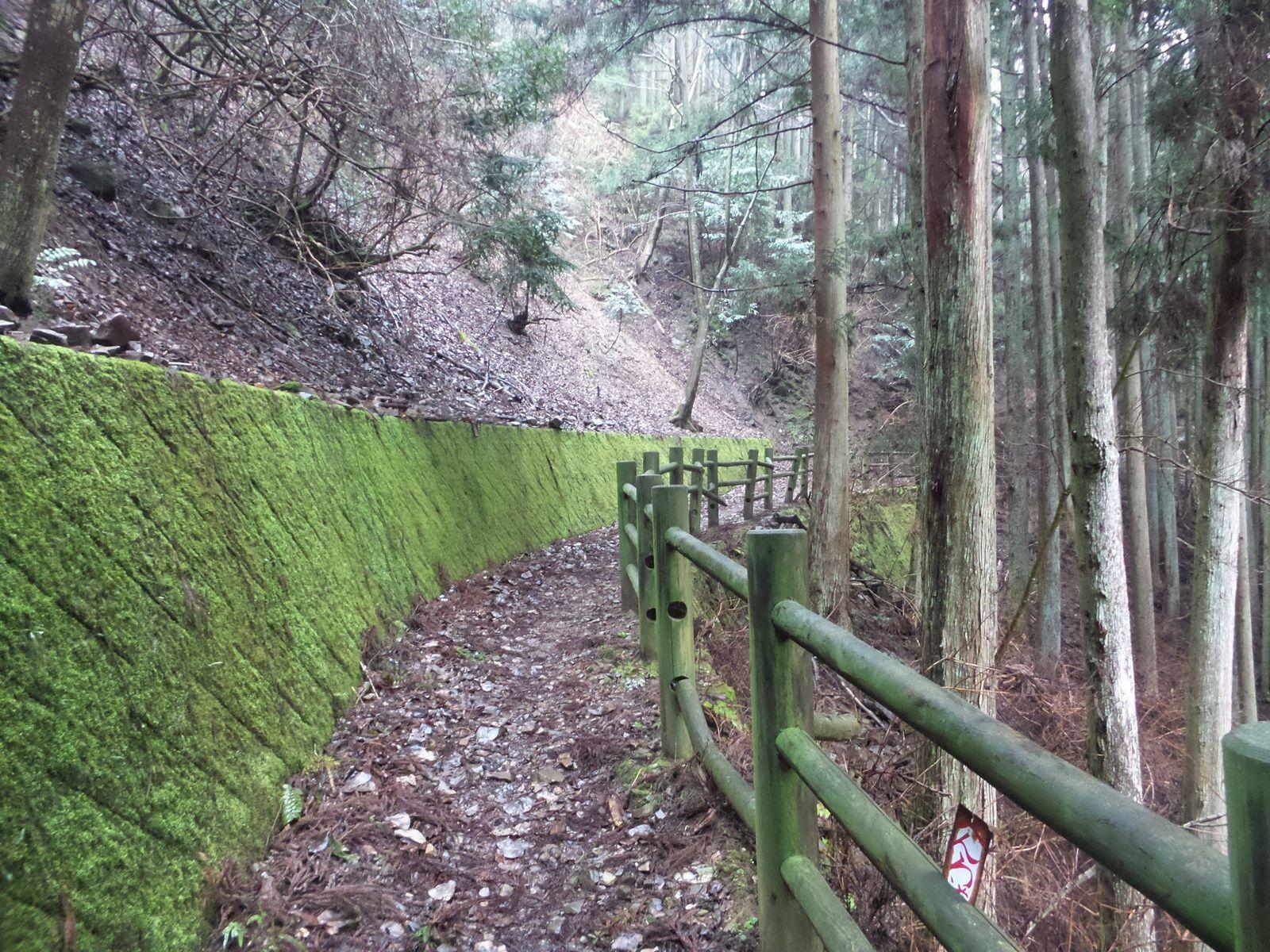 Temples 46 à 51 et Matsuyama